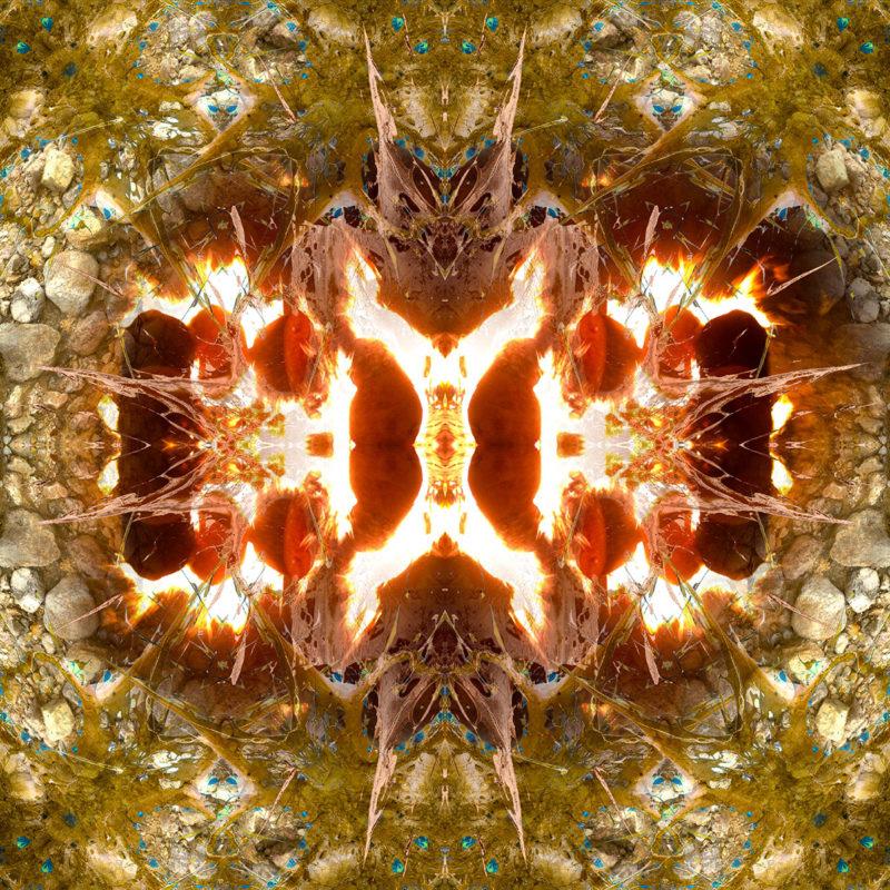 BURNING EARTH / Andreas Streicher / Metamorphosis / 2013